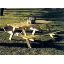 Stół piwny z ławkami, Picnic